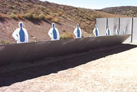 Action Target In the Line of Fire with Turning Targets